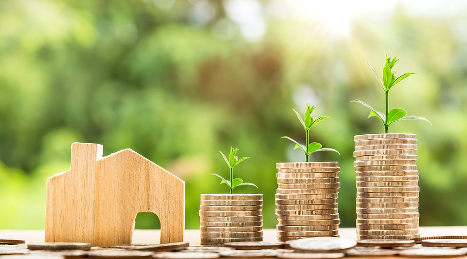 Investissement locatif : ancien ou neuf ?