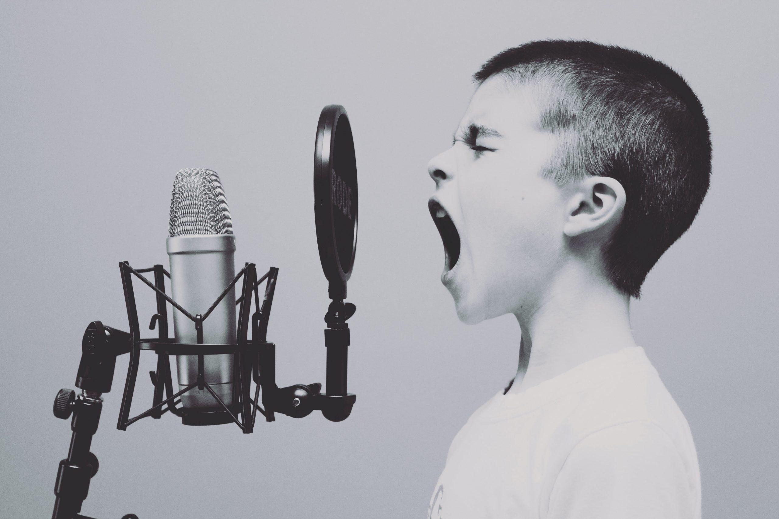 messagerie vocale professionnelle