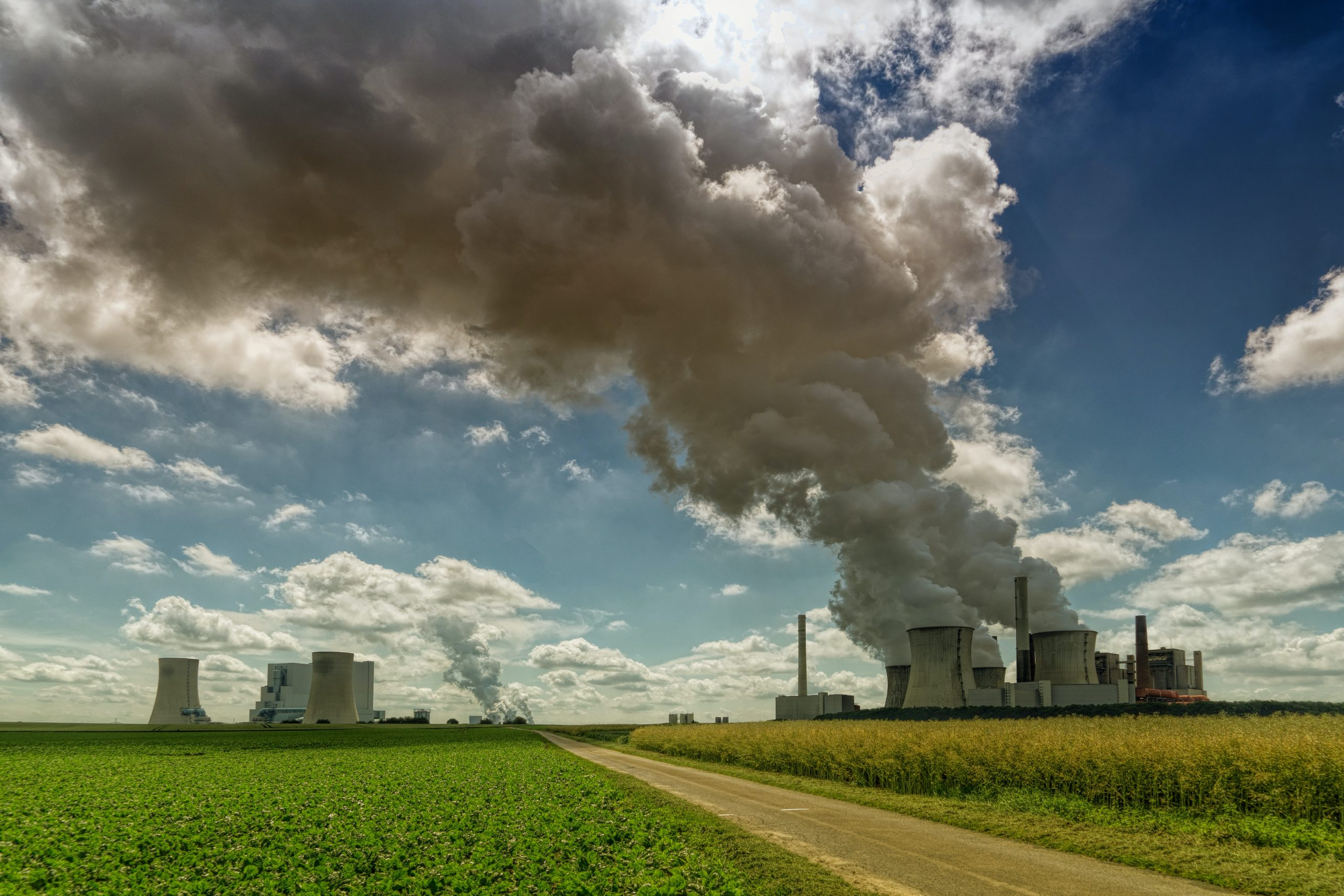 Quelles solutions pour lutter contre la pollution de l'air ?